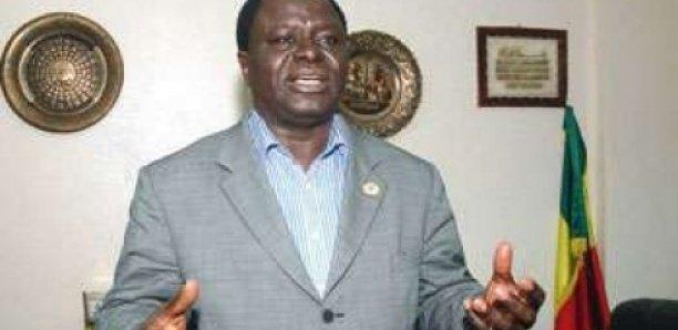 Moustapha Tall : «Aucun fonctionnaire du ministère du Commerce n'ose faire une fausse DIPA»