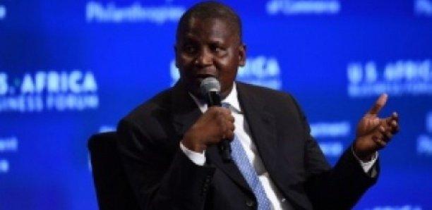 Plainte des héritiers de Kader Mbacké : Les poursuites contre Dangoté suspendues