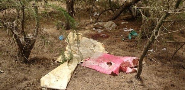 Tivaouane Peulh : Le corps sans vie d'une jeune femme « Toubab » retrouvée dans la bande des filaos