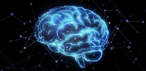 Comment tromper son cerveau pour perdre ses kilos durablement