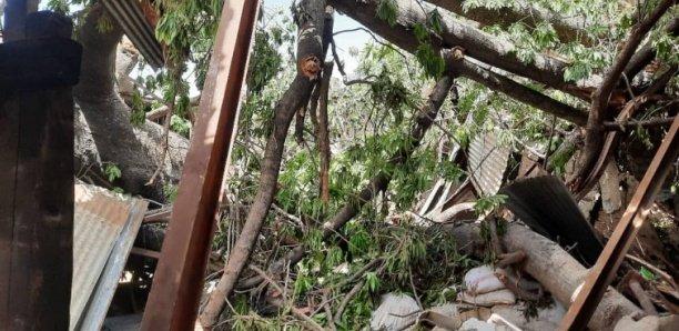 Gambie : 10 morts dans une tempête, un millier de sans abri à travers le pays