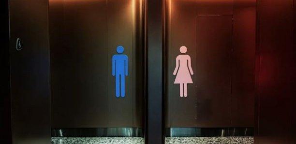 Une caméra découverte dans les toilettes pour femmes d'un prestigieux cabinet d'avocat